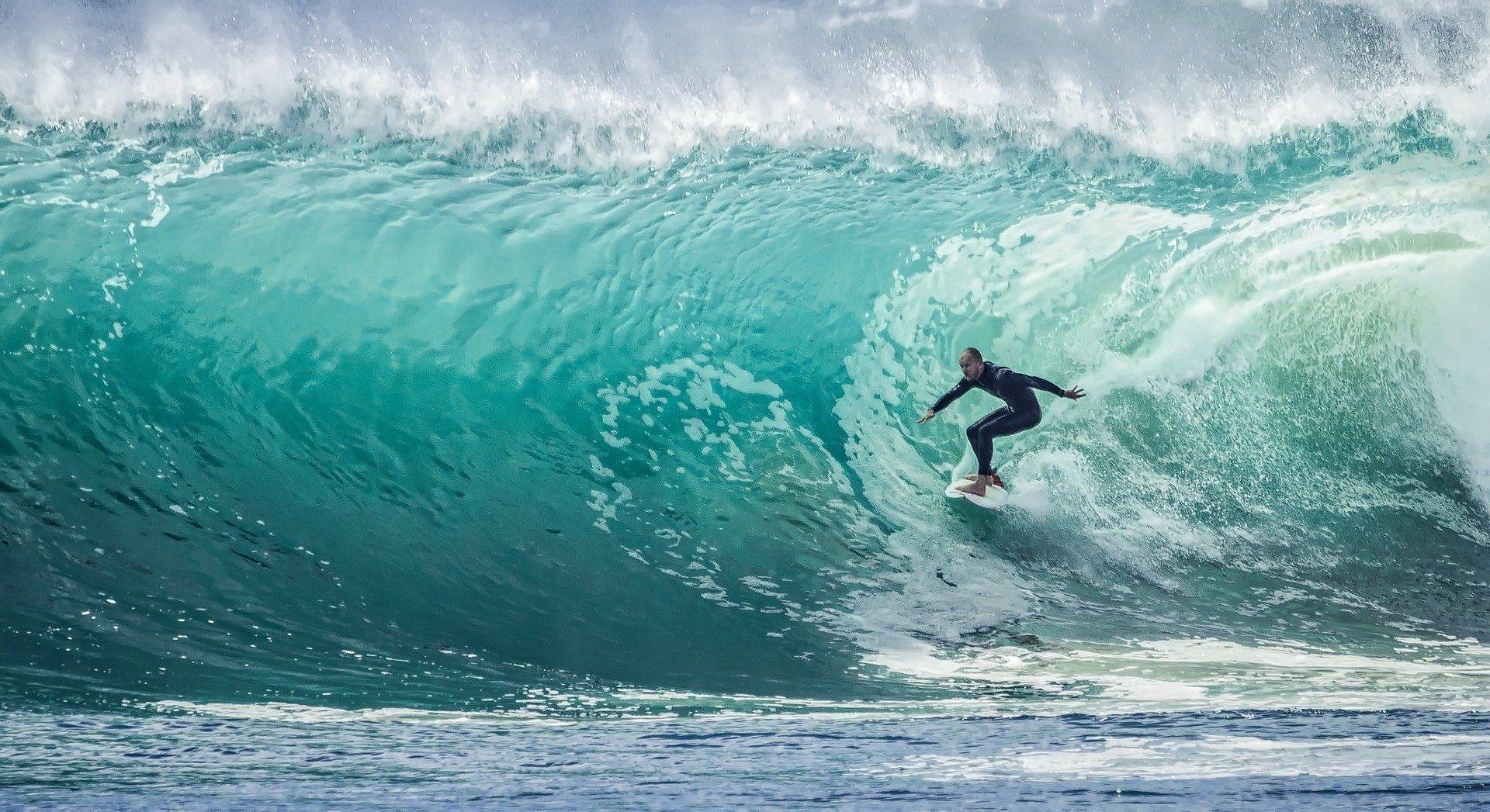 surfer sur buzz